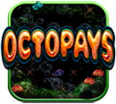 Octopays New Slot
