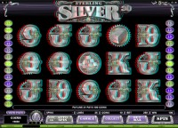 Sterling Silver 3D - New Slot