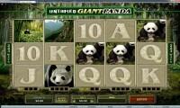 Untamed Giant Panda 1